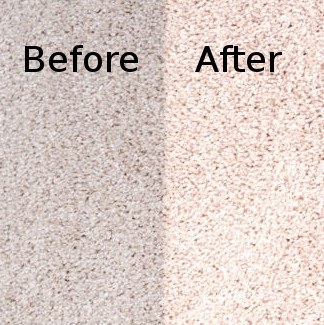 Carpet Cleaning Services Before and After